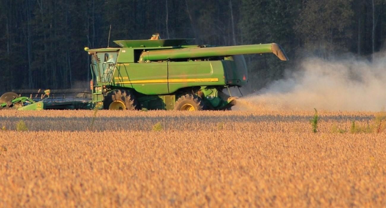Cosecha de soja 2019 espera llegar a 11millones de toneladas